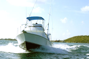 caribbean/martin_maarten/st_martin/Cole Bay/Deep Sea Fishing/Activities/Lee's Deep Sea Fishing