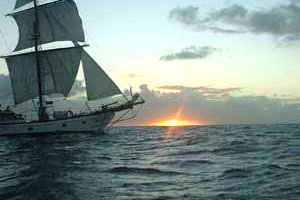 caribbean/martin_maarten/st_martin/Philipsburg/Day trips & Excursions/Activities/Lord Sheffield Tall Ship Adventures