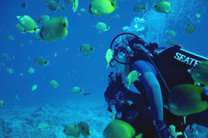 caribbean/martin_maarten/st_martin/ /Watersport/Activities/Atlantis Dive Center